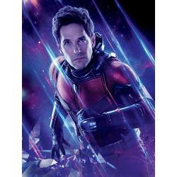 Avengers: Endgame Collection (Коллекция постеров) 4 | Мстители: Финал | Человек муравей