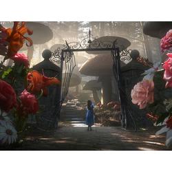 Alice in Wonderland | Алиса в Стране Чудес