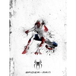 Avengers & DC Collection (Коллекция постеров): Spider man | Человек Паук
