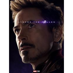 Avengers: Endgame Collection (Коллекция постеров) | Мстители: Финал | Железный человек