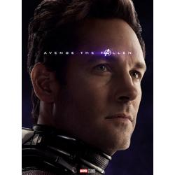 Avengers: Endgame Collection (Коллекция постеров) | Мстители: Финал | Человек муравей