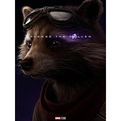 Avengers: Endgame Collection (Коллекция постеров) | Мстители: Финал | Ракета