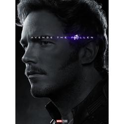 Avengers: Endgame Collection (Коллекция постеров) | Мстители: Финал | Звёздный лорд