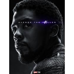 Avengers: Endgame Collection (Коллекция постеров) | Мстители: Финал | Черная пантера