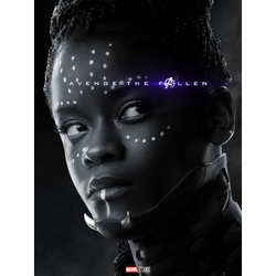 Avengers: Endgame Collection (Коллекция постеров) | Мстители: Финал | Шури