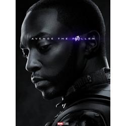 Avengers: Endgame Collection (Коллекция постеров) | Мстители: Финал | Сокол