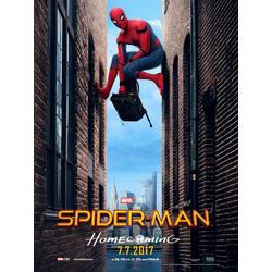 Spider Man | Человек Паук