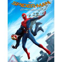 Spider Man: Home Coming   Человек Паук: Возвращение Домой