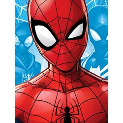 Spider Man   Человек Паук