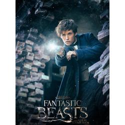 Fantastic Beasts | Фантастические твари и где они обитают
