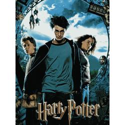 Harry Potter | Гарри Поттер и Узник Аскабана