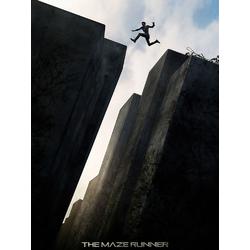 Maze Runner   Бегущий в лабиринте