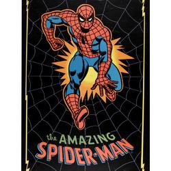 Spider Man Amazing   Человек Паук