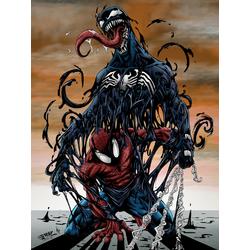 Spider Man & Venom | Человек Паук и Веном