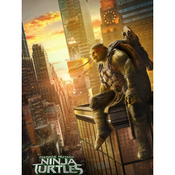 Teenage Mutant Ninja Turtles (Коллекция постеров №3) | Черепашки Ниндзя: Микеланджело