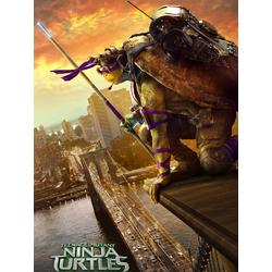 Teenage Mutant Ninja Turtles (Коллекция постеров №3) | Черепашки Ниндзя: Донателло