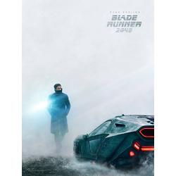 Blade Runner 2049 | Бегущий по лезвию
