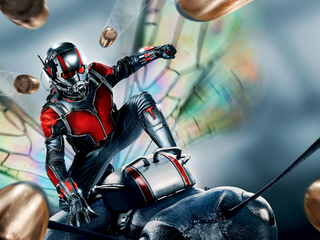 Категория постеров и плакатов Ant-man