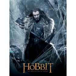 Hobbit | Хоббит: Пустошь Смауга