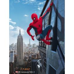 Spider Man: Home Coming | Человек Паук: Возвращение Домой