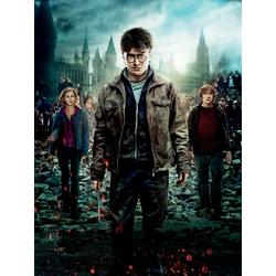 Harry Potter | Гарри Поттер и Дары Смерти: Часть 2