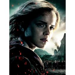 Harry Potter: Hermione Granger | Гарри Поттер: Гермиона Грейнджер