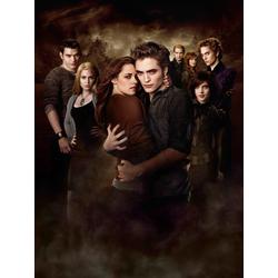 Twilight | Сумерки