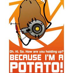 Portal 2 - Because I'M A Potato!