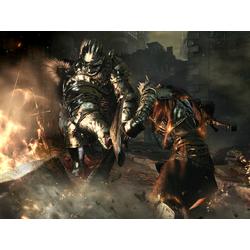Dark Souls   Темные Души