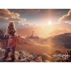 Horizon Zero Dawn - Forbidden West (Коллекция постеров №1)