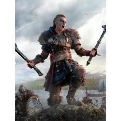 Assassin's Creed Valhalla (Модульные постеры) - 2