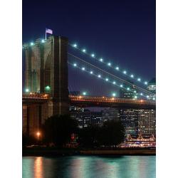 Brooklyn Bridge (Модульные постеры) - 2 | Бруклинский мост