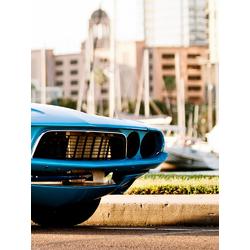 Dodge Charger (Модульные постеры) - 4 | Додж