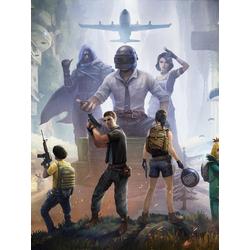 PlayerUnknown's BattleGrounds (Модульные постеры) - 2