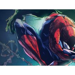 Spider Man & Hulk (Модульные постеры) - 1 | Человек Паук и Халк