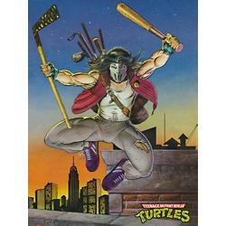 Teenage Mutant Ninja Turtles: Casey Jones | Черепашки ниндзя: Кейси