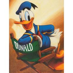 Duck Tales: Donald Duck   Утиные истории: Дональд Дак