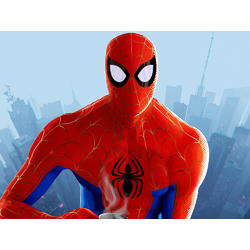 Spider-Man: Into the Spider-Verse   Человек Паук: Через вселенные