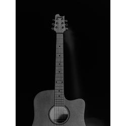 Guitar - Argent | Гитара