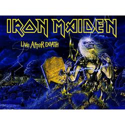 Iron Maiden | Железная дева