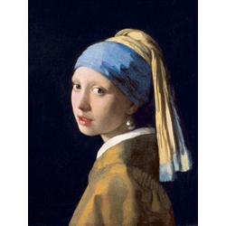 Jan Vermeer   Ян Вермеер - Девушка с жемчужной серёжкой