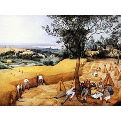 Pieter Bruegel   Питер Брейгель - Жатва