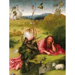 Jheronimus Bosch | Иероним Босх - Св. Иоанн Креститель в раздумьях