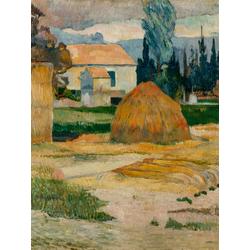 Paul Gauguin | Гоген Поль - Крестьянский дом в Арли