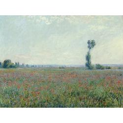 Monet Claude | Клод Моне | Poppy Field