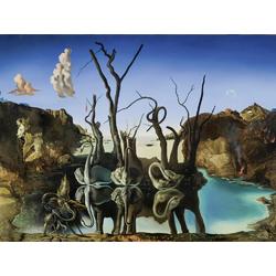 Salvador Dali | Сальвадор Дали | Лебеди отраженные в слонах