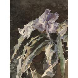 Врубель Михаил | Орхидея. Этюд
