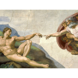 Michelangelo | Микеланджело Буонарроти | Сотворение Адама