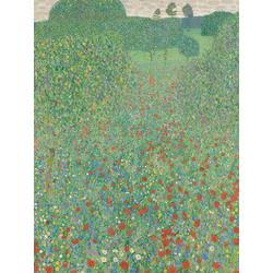 Gustav Klimt | Poppy Field