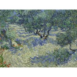 Van Gogh | Ван Гог | Olive Orchard